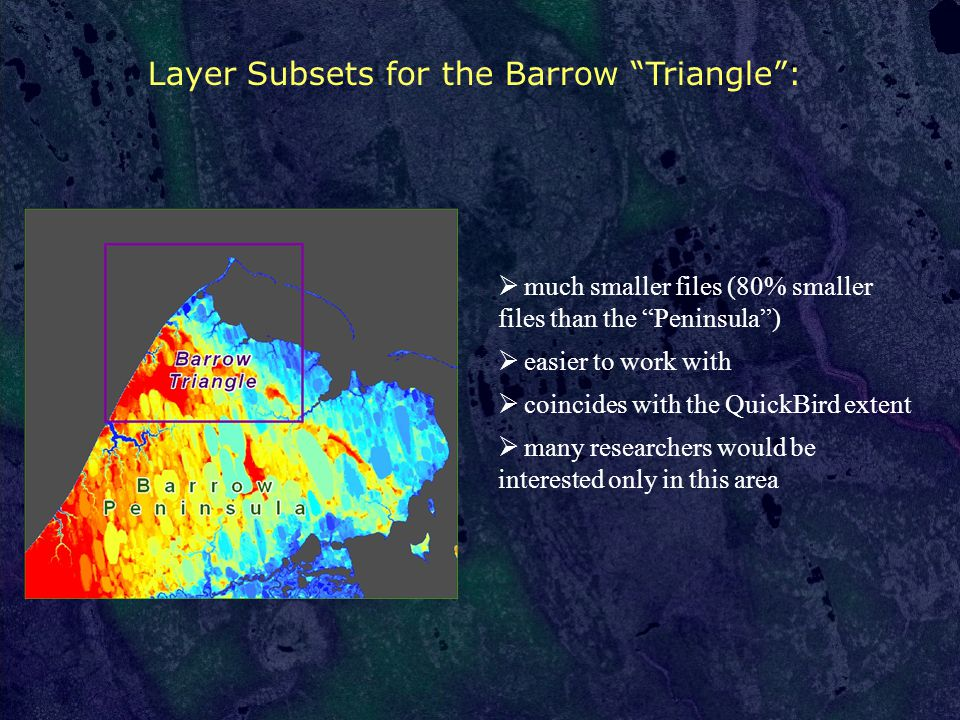 Layer Subsets for the Barrow Triangle :  much smaller files (80% smaller files than the Peninsula )  easier to work with  coincides with the QuickBird extent  many researchers would be interested only in this area