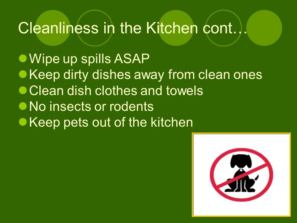 Cleanliness in the Kitchen cont… Wipe up spills ASAP Keep dirty dishes away from clean ones Clean dish clothes and towels No insects or rodents Keep p