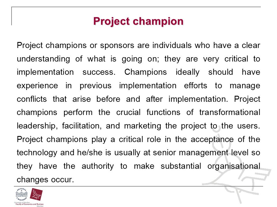 Project champion Project champions or sponsors are individuals who have a clear understanding of what is going on; they are very critical to implement