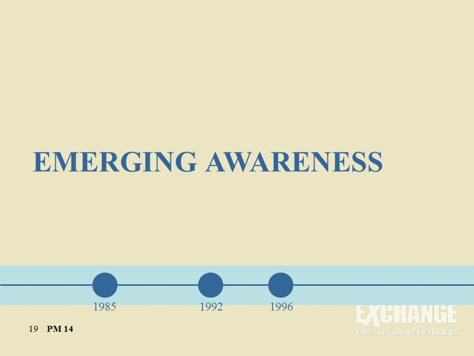 EMERGING AWARENESS 198519921996 19 PM 14