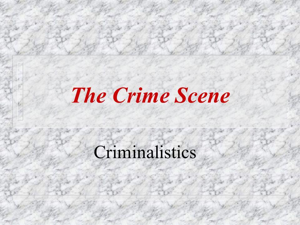 Criminalistics The Crime Scene