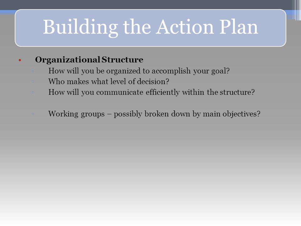 Building the Action Plan Organizational Structure ▫How will you be organized to accomplish your goal.