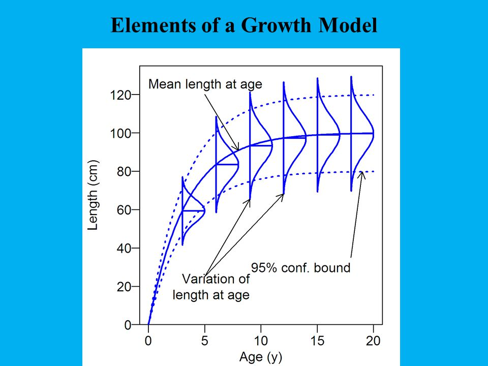 Elements of a Growth Model