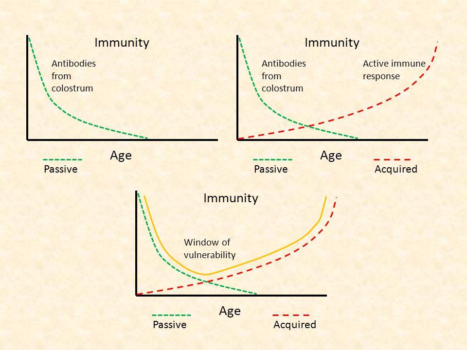 Age Immunity Passive Antibodies from colostrum Age Immunity Passive Antibodies from colostrum Acquired Active immune response Age Immunity PassiveAcqu