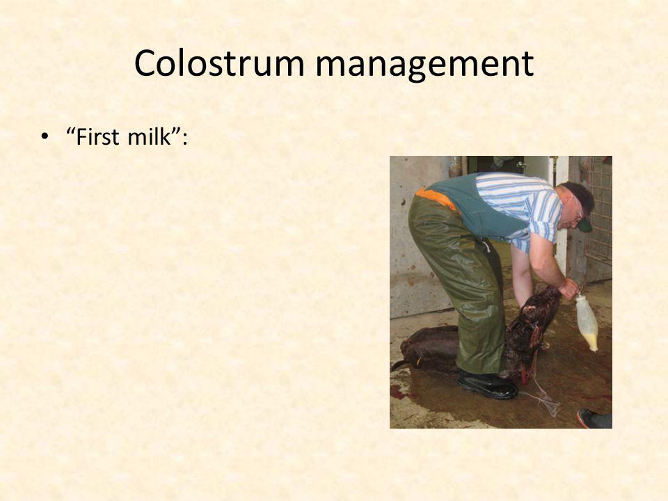 """Colostrum management """"First milk"""":"""
