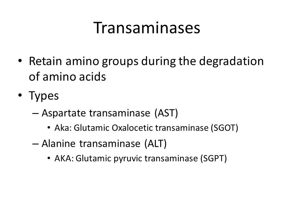Transaminases Retain amino groups during the degradation of amino acids Types – Aspartate transaminase (AST) Aka: Glutamic Oxalocetic transaminase (SG