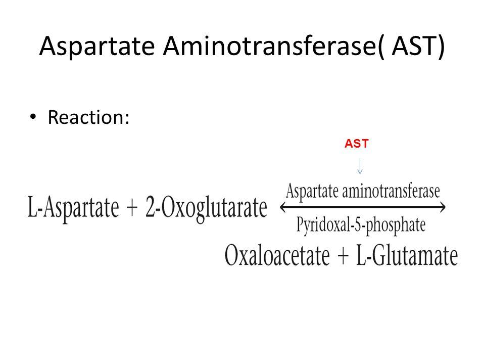 Aspartate Aminotransferase( AST) Reaction: AST