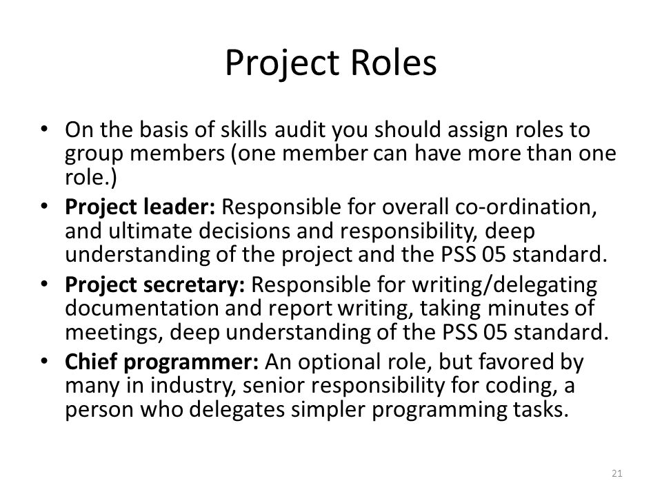 Project Roles On the basis of skills audit you should assign roles to group members (one member can have more than one role.) Project leader: Responsible for overall co-ordination, and ultimate decisions and responsibility, deep understanding of the project and the PSS 05 standard.