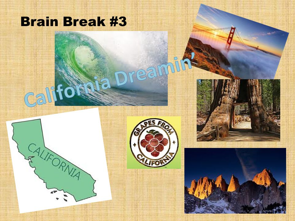 Brain Break #3
