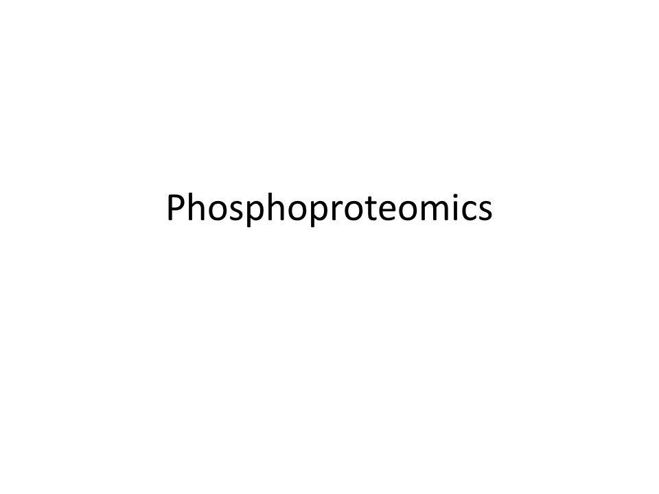 Phosphoproteomics