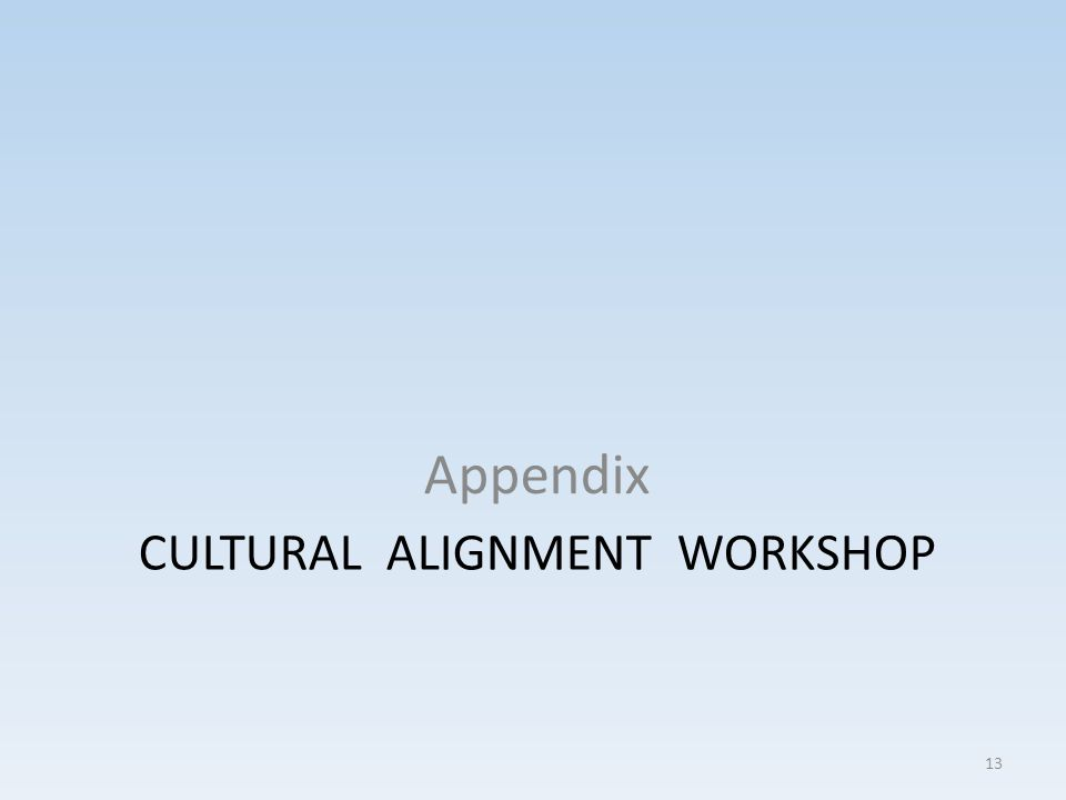 CULTURAL ALIGNMENT WORKSHOP Appendix 13