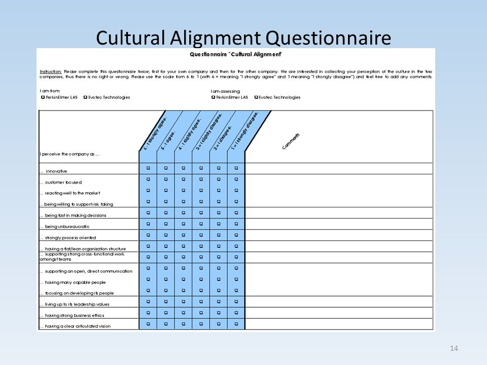 Cultural Alignment Questionnaire 14