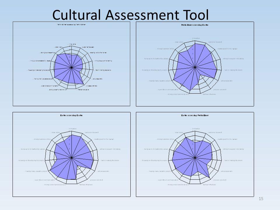 Cultural Assessment Tool 15