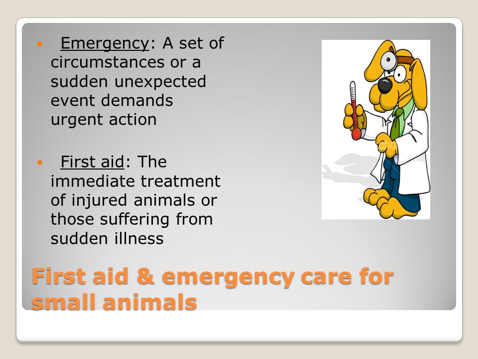 First aid & emergency care for small animals Emergency: A set of circumstances or a sudden unexpected event demands urgent action First aid: The immediate treatment of injured animals or those suffering from sudden illness