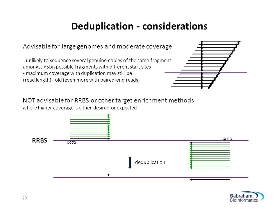 Deduplication - considerations 29 RRBS deduplication Advisable for large genomes and moderate coverage - unlikely to sequence several genuine copies o