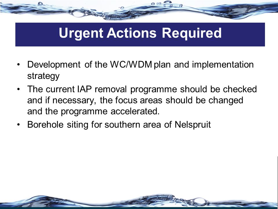 Development of the WC/WDM plan and implementation strategy The current IAP removal programme should be checked and if necessary, the focus areas should be changed and the programme accelerated.