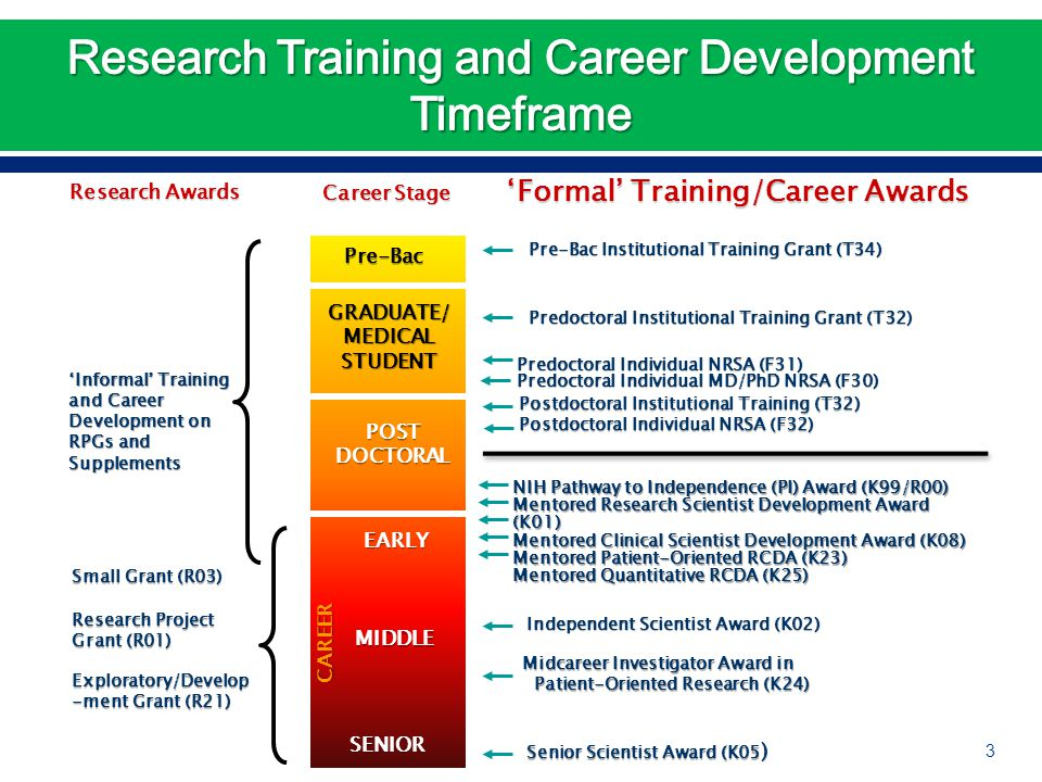 Predoctoral Individual NRSA (F31) Predoctoral Individual MD/PhD NRSA (F30) Postdoctoral Institutional Training (T32) Postdoctoral Individual NRSA (F32) Small Grant (R03) Research Project Grant (R01) Independent Scientist Award (K02) Independent Scientist Award (K02) Senior Scientist Award (K05 ) Senior Scientist Award (K05 ) Career Stage 'Formal' Training/Career Awards GRADUATE/MEDICALSTUDENT POSTDOCTORAL EARLY MIDDLE SENIOR CAREER Predoctoral Institutional Training Grant (T32) Predoctoral Institutional Training Grant (T32) NIH Pathway to Independence (PI) Award (K99/R00) Mentored Research Scientist Development Award (K01) Mentored Clinical Scientist Development Award (K08) Mentored Patient-Oriented RCDA (K23) Mentored Quantitative RCDA (K25) Midcareer Investigator Award in Patient-Oriented Research (K24) Patient-Oriented Research (K24) Exploratory/Develop -ment Grant (R21) Pre-Bac Pre-Bac Institutional Training Grant (T34) Pre-Bac Institutional Training Grant (T34) 'Informal' Training and Career Development on RPGs and Supplements Research Awards 3