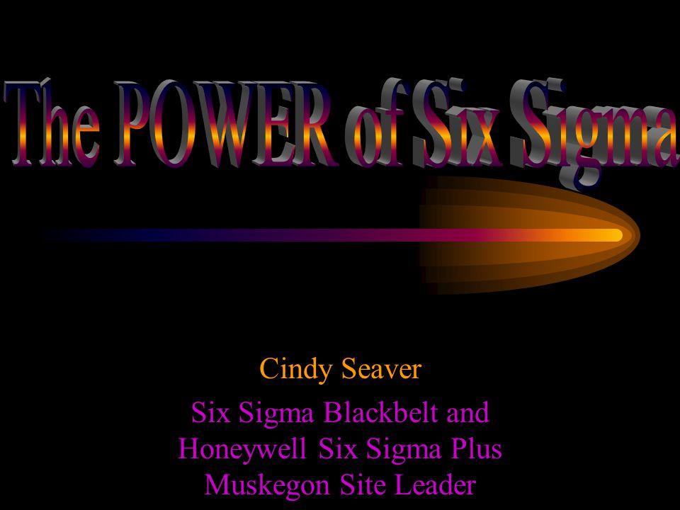 Cindy Seaver Six Sigma Blackbelt and Honeywell Six Sigma Plus Muskegon Site Leader