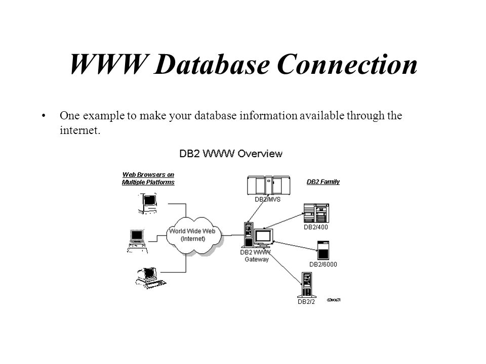 WWW Database Connection One example to make your database information available through the internet.