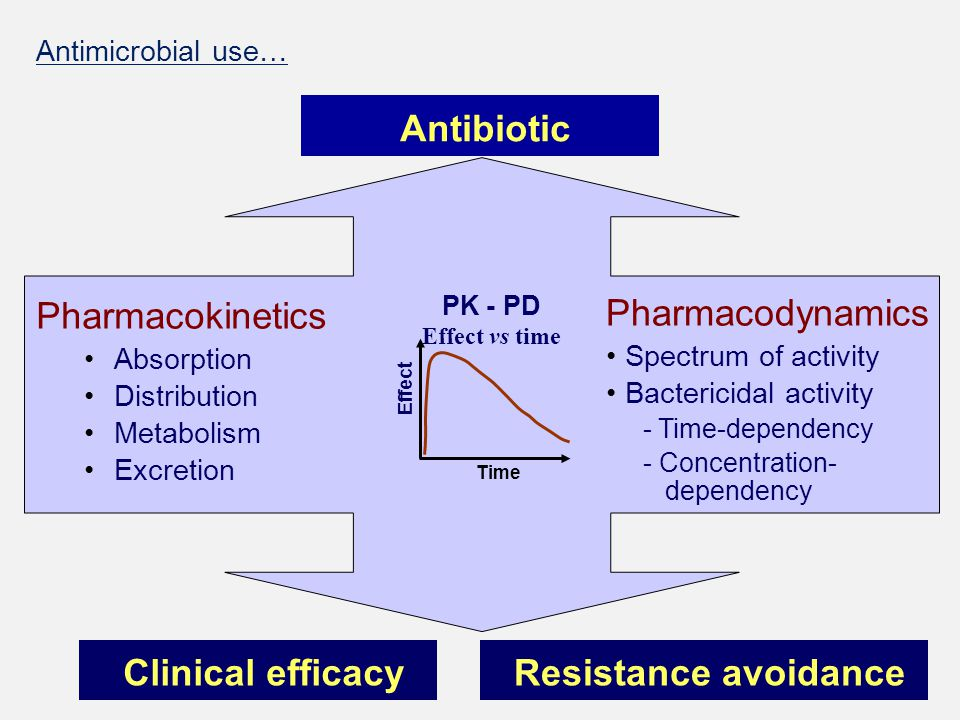 Pharmacokinetics Absorption Distribution Metabolism Excretion Pharmacodynamics Spectrum of activity Bactericidal activity - Time-dependency - Concentr