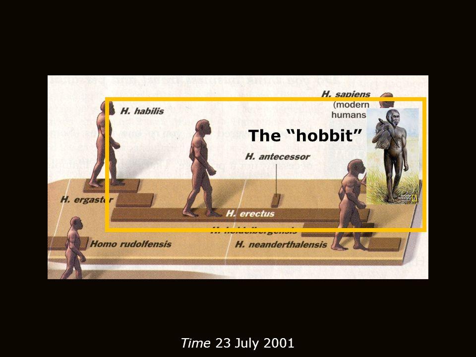 """The """"hobbit"""""""