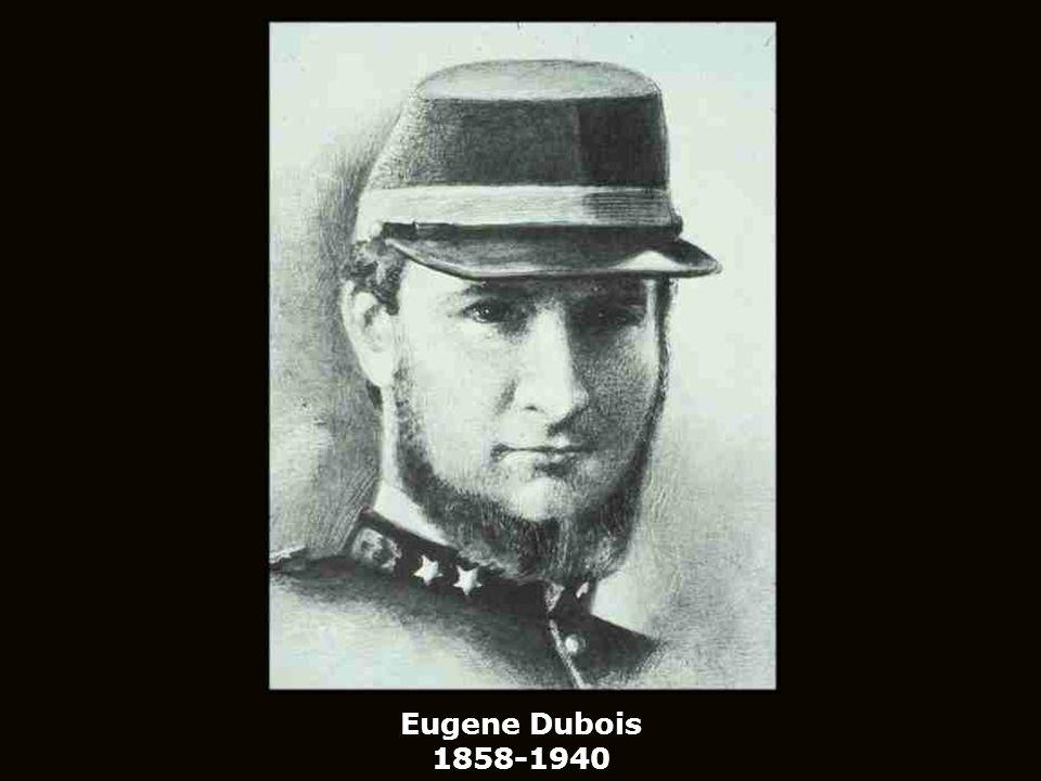 Eugene Dubois 1858-1940