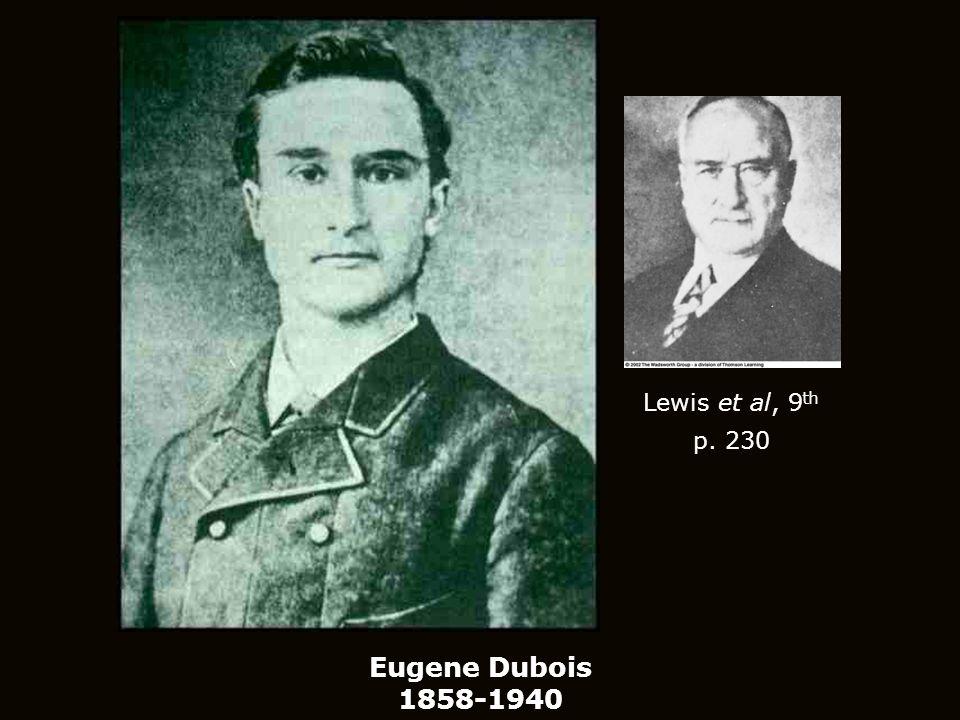 Eugene Dubois 1858-1940 Lewis et al, 9 th p. 230