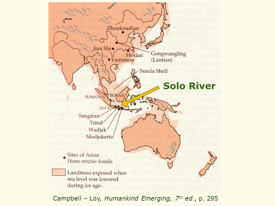 Campbell – Loy, Humankind Emerging, 7 th ed., p. 295 Solo River
