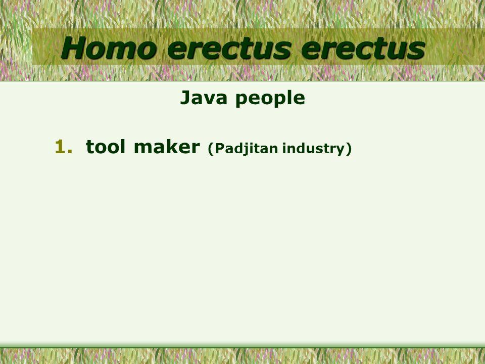 Homo erectus erectus 1.tool maker (Padjitan industry) Java people