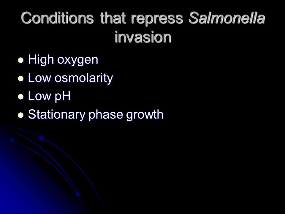 Can the hha gene of Salmonella function to repress the hemolysin activity of E.