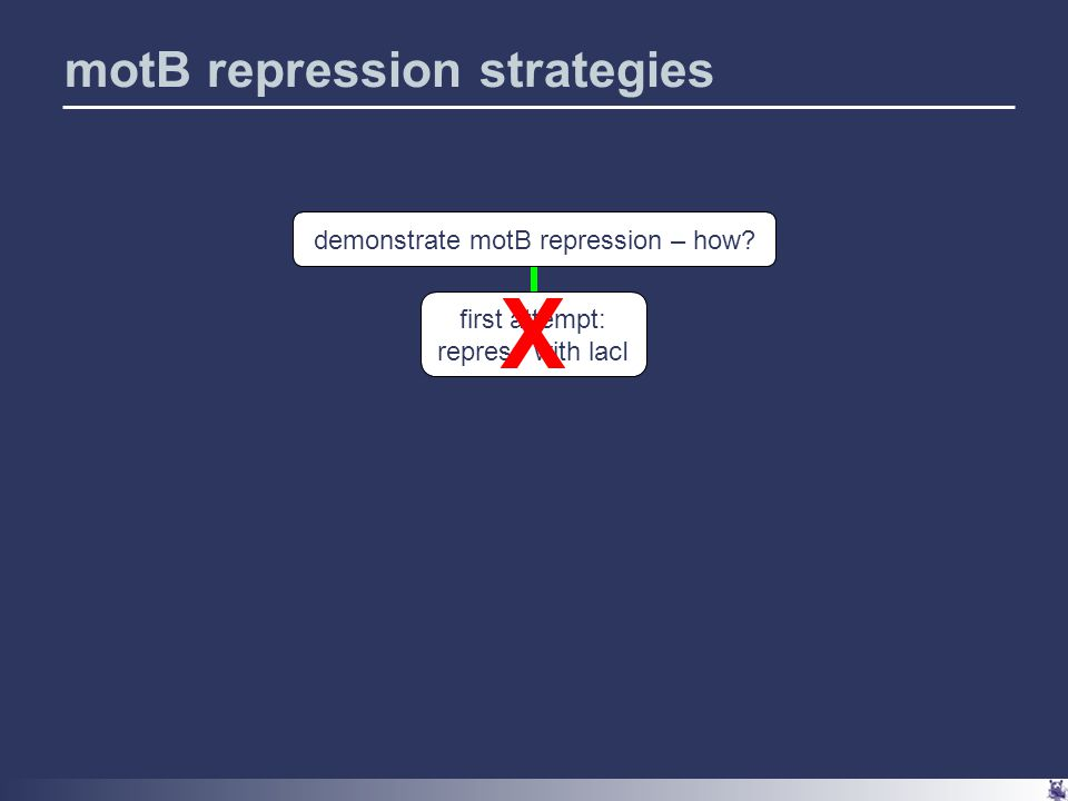motB repression strategies demonstrate motB repression – how first attempt: repress with lacI X