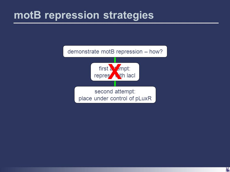 motB repression strategies demonstrate motB repression – how.