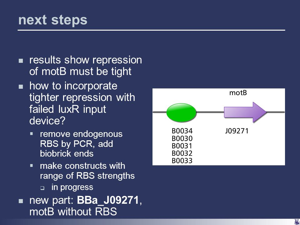 next steps results show repression of motB must be tight how to incorporate tighter repression with failed luxR input device.