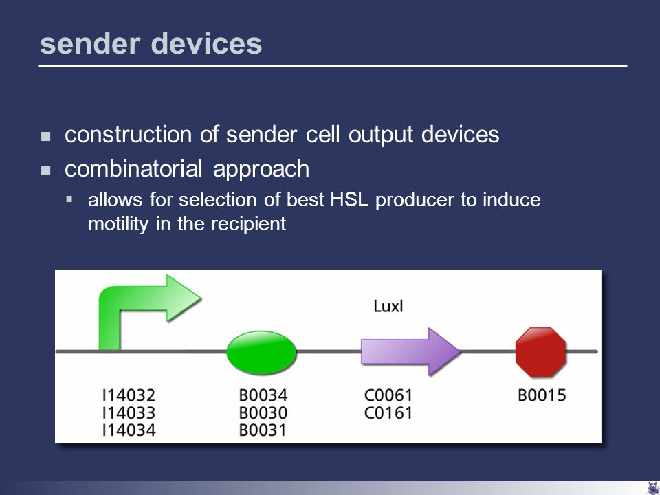 sender devices construction of sender cell output devices combinatorial approach  allows for selection of best HSL producer to induce motility in the recipient