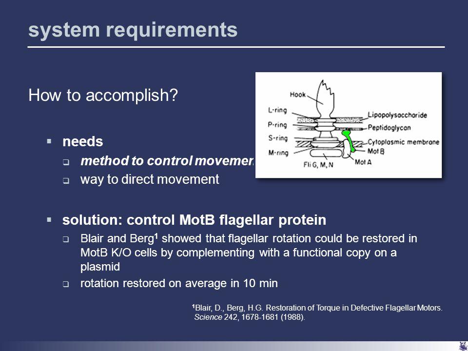 motB repression strategies demonstrate motB repression – how.
