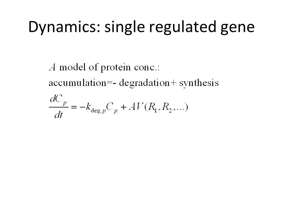 Dynamics: single regulated gene