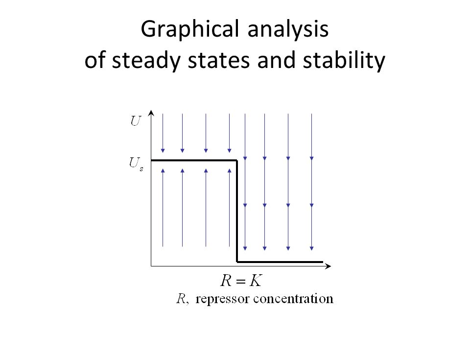 Graphical analysis of steady states and stability