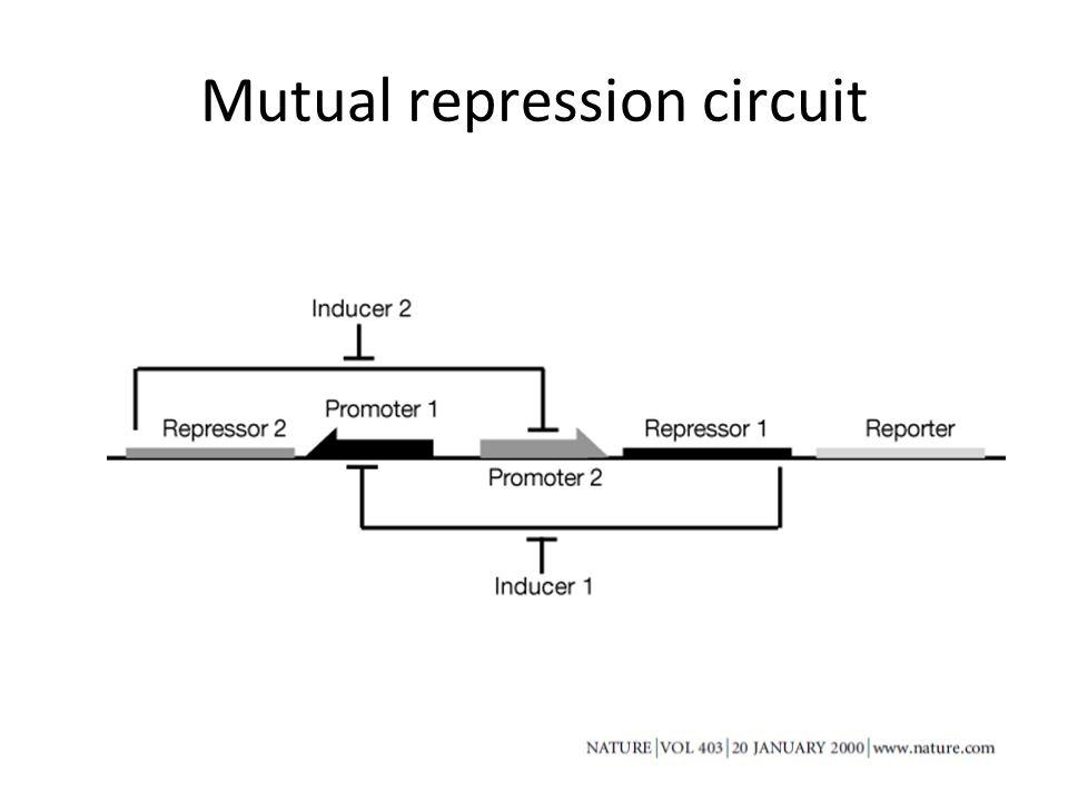 Mutual repression circuit