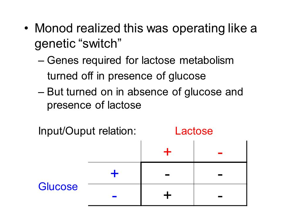 Monod realized this was operating like a genetic switch –Genes required for lactose metabolism turned off in presence of glucose –But turned on in absence of glucose and presence of lactose Input/Ouput relation:Lactose +- Glucose +-- -+-