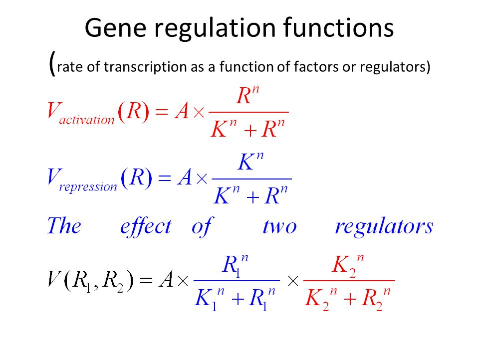 Gene regulation functions ( rate of transcription as a function of factors or regulators)