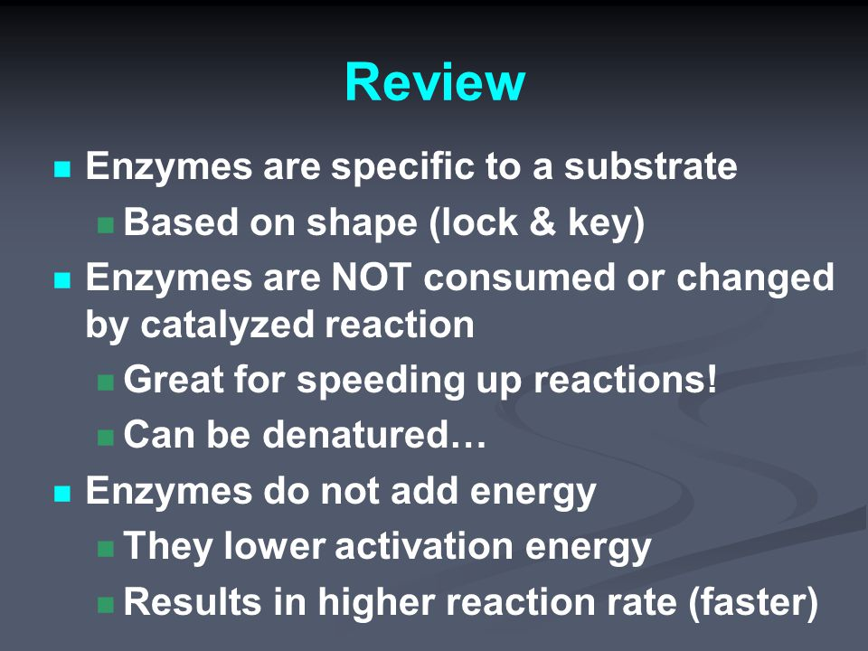Review Enzymes are specific to a substrate Based on shape (lock & key) Enzymes are NOT consumed or changed by catalyzed reaction Great for speeding up reactions.