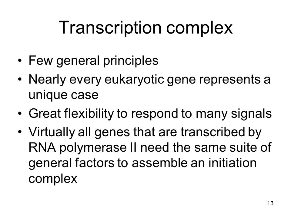 Transcription complex Few general principles Nearly every eukaryotic gene represents a unique case Great flexibility to respond to many signals Virtua