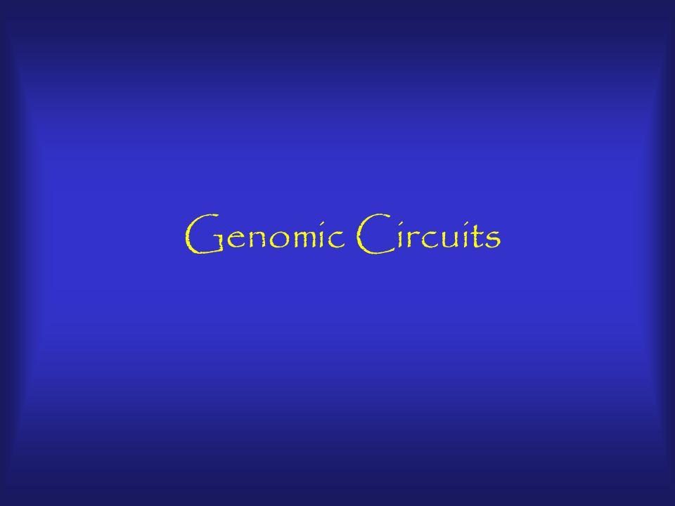 Genomic Circuits