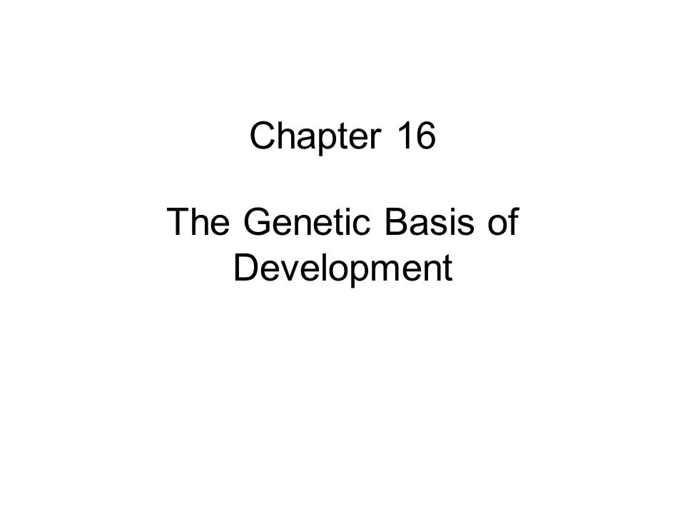 Chapter 16 The Genetic Basis of Development