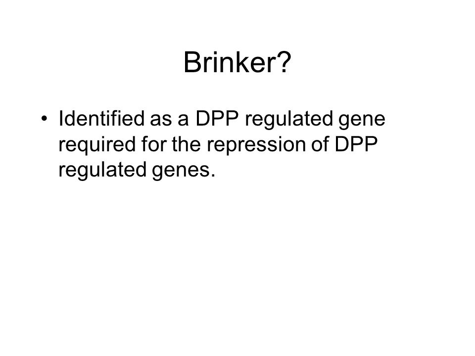 Brinker? Identified as a DPP regulated gene required for the repression of DPP regulated genes.