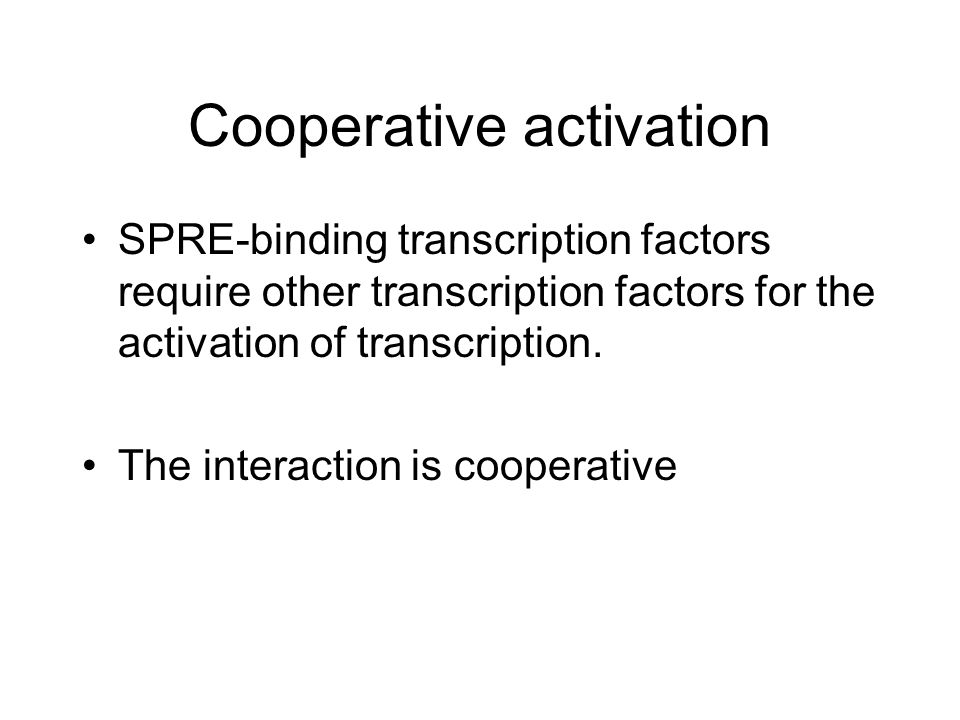 Cooperative activation SPRE-binding transcription factors require other transcription factors for the activation of transcription.