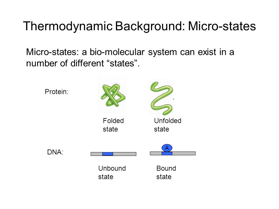Thermodynamic Background: Micro-states Micro-states: a bio-molecular system can exist in a number of different states .