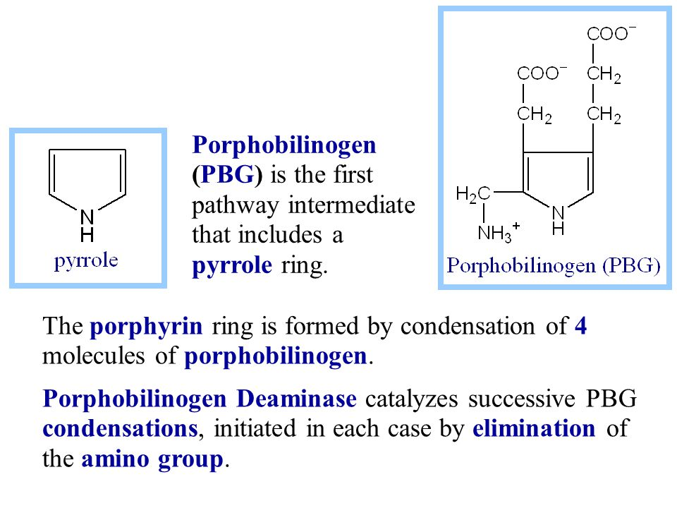 The porphyrin ring is formed by condensation of 4 molecules of porphobilinogen.