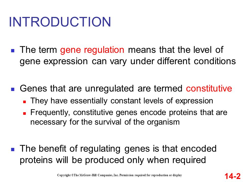 INTRODUCTION Gene regulation is important for cellular processes such as 1.