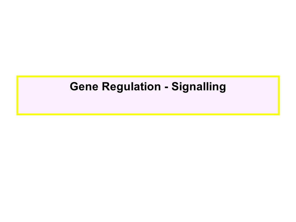 Gene Regulation - Signalling